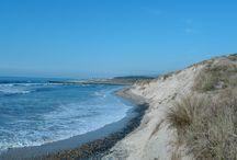 Ein Tag am Meer / Moodboard für die Planung einer Strandhochzeit
