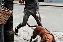 Walk the dog in style