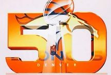 Denver Broncos / The best team in the world!