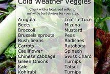 cold weather veggies