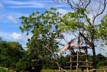 Sri Lanka Village Landscapes / Sri Lanka Village Landscapes