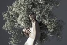 Gregoire Alexandre / Inspiração fotográfica