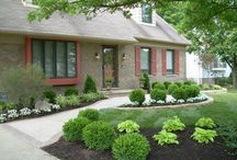 Front landscaping / by Amanda Gernert