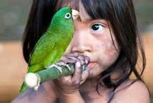 Children & Animals, (it just works)