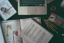 EDUCATION-STUDYING