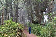 Outdoors in Oregon and Washington / For everything outdoorsy on the Oregon and Washington coasts. / by Coast Explorer Magazine