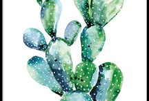 Cactus Paintings