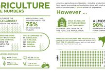 Ag Facts / The numbers, facts and realities of farming.