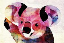 Koala Love! <3 / by Carolina Perez