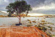 Australia / Photography