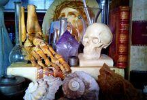 Antique Curio, curiosites curiosity oddities oddity / Antique Curio, curiosites curiosity oddities oddity