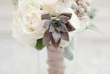 Flowers / by Seth Jenks