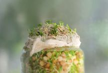 Health {Sprouting}