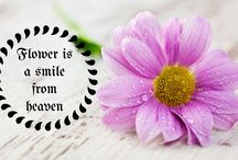 flowery quotes