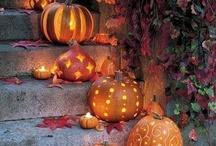 helloween kürbis