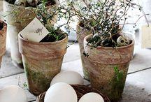 Nordic designer Easter / by Nordic Designer