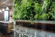 DESIGN- Bar/Restaraunt styling / by Katrina