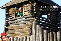 La Araucanía