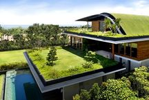 sustentable house