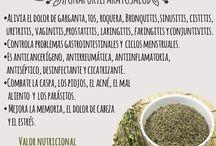 Herbes medicinals