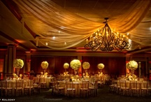 Inspired by White and Gold / by Atlas Party Rental