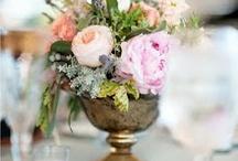 flowers / by Bridget Matherne