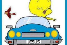 Crazy bout Tweety