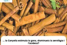 Canyella / Canela / Aquí trobaràs curiositats sobre la canyella / Aquí encontrarás curiosidades sobre la canela