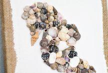 seashells presents