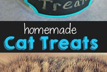 Homemade pet food and treats