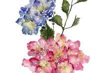 Flower power inspiration
