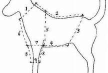 Moldes para roupas de cão