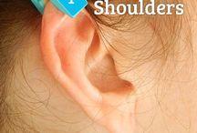 Ear reflex