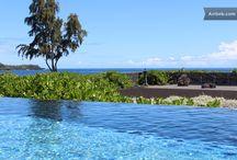 Hawaii / by Suzi McCoy
