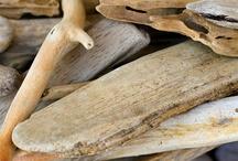 *MN* Wood / Matière vivante et inspirante (material, texture,...)