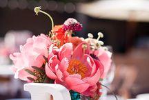 Wedding / by Lauren Rectenwal