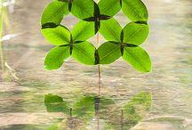 Environmental art -