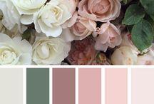 Renk uyumlari