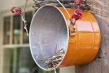 birds shelter