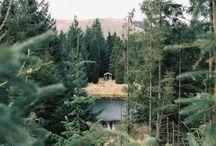 Nature - Naturaleza / Analog photographies