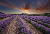 Amazing Natural Image Download   Famous HD Wallpaper