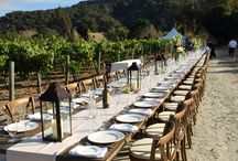 Vineyard Dining / A majestic venue in the beautiful outdoors to enjoy a fresh, farm-to-table culinary experience of Carmel, California.