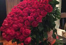 ♡Un millón de rosas♡