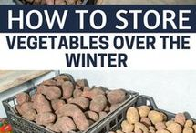 how to store veg over winter