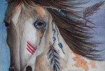 Horse and native American / by D.S.