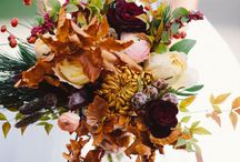 Seasonal: Fall / by Plum Sage Flowers