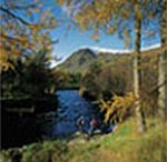 Scotland Caravan Hire / Private static caravans for hire on holiday parks in Scotland