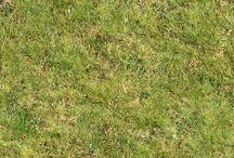 건축 잔디 하이앵글