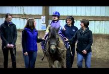 Who we are, what we do, everyday! / Forward Stride is dedicated to improving lives through equine-assisted activities and therapies. Founded in 2003, Forward Stride is the largest therapeutic center of its kind in Oregon. #forwardstride #therapeuticriding