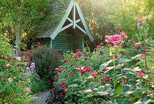 Garden Inspiration / Gardening ideas to help inspire us